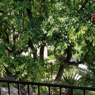 Photo 14: MIRA MESA Condo for sale : 2 bedrooms : 10154 Camino Ruiz #7 in San Diego