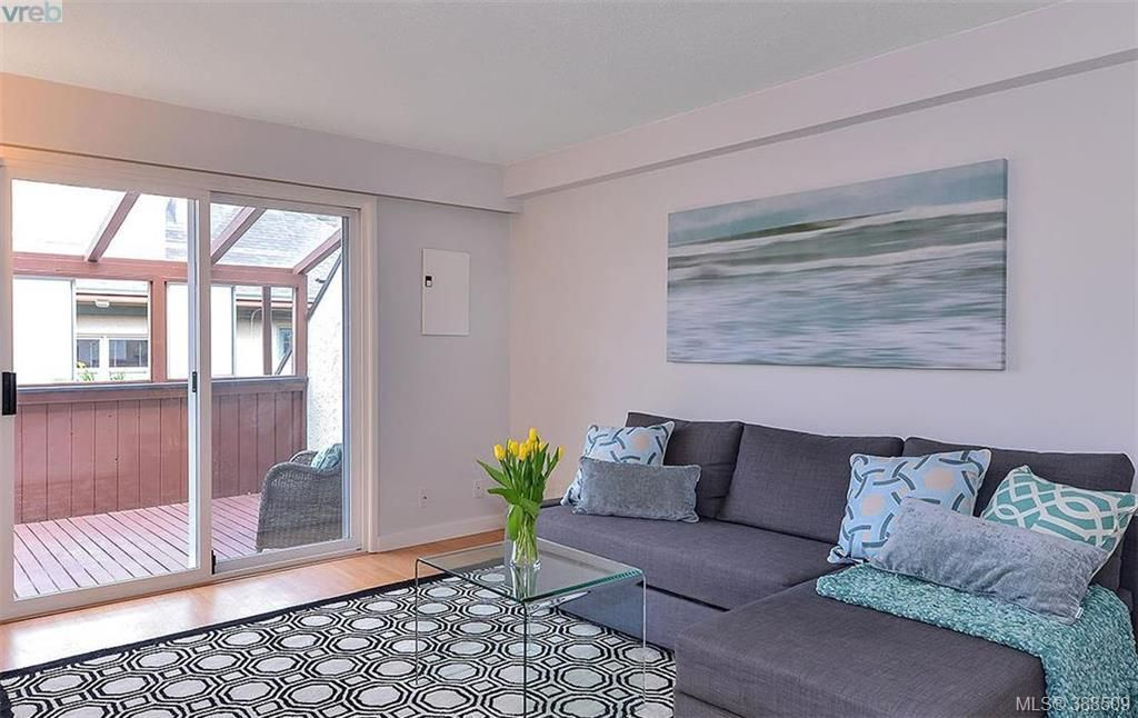 Main Photo: 8 954 Queens Ave in VICTORIA: Vi Central Park Row/Townhouse for sale (Victoria)  : MLS®# 780769