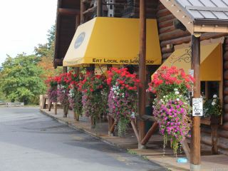 Photo 3: 4675 Trans Canada Hwy in DUNCAN: Du East Duncan Mixed Use for sale (Duncan)  : MLS®# 834342