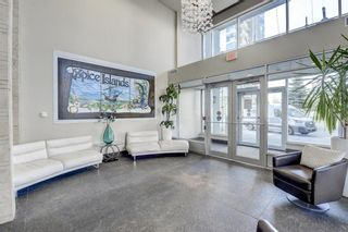 Photo 27: 2805 99 SPRUCE Place SW in Calgary: Spruce Cliff Apartment for sale : MLS®# A1020755