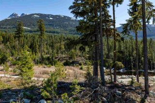 Photo 3: 9252 WEDGEMOUNT PLATEAU Drive in Whistler: WedgeWoods Land for sale : MLS®# R2575756