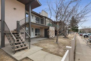 Photo 5: 2045 SADDLEBACK Road in Edmonton: Zone 16 Carriage for sale : MLS®# E4236449