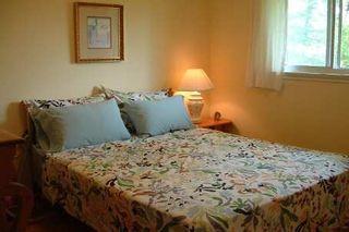 Photo 7: 35 Doerr Road in Toronto: House (Bungalow) for sale (E09: TORONTO)  : MLS®# E1897274