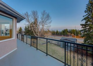 Photo 47: 711 HAWKSIDE Mews NW in Calgary: Hawkwood Detached for sale : MLS®# A1092021