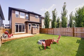 Photo 25: 351 EVANSPARK Garden NW in Calgary: Evanston Detached for sale : MLS®# C4197568