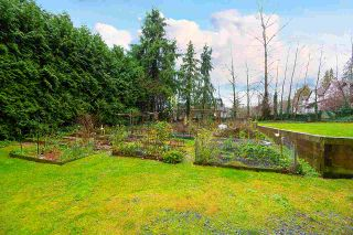 "Photo 30: 203 2763 CHANDLERY Place in Vancouver: South Marine Condo for sale in ""RIVER DANCE"" (Vancouver East)  : MLS®# R2526215"