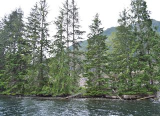 Photo 5: LT 1 Neroutsos Inlet in : NI Port Hardy Land for sale (North Island)  : MLS®# 859845