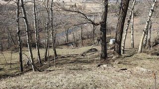 Photo 22: SE 35-20-2W5: Rural Foothills County Residential Land for sale : MLS®# A1101395