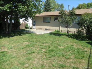 Photo 6: 176 Risbey Crescent in WINNIPEG: Westwood / Crestview Residential for sale (West Winnipeg)  : MLS®# 1323461
