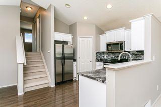 Photo 11: 9028 SCOTT Crescent in Edmonton: Zone 14 House for sale : MLS®# E4250588
