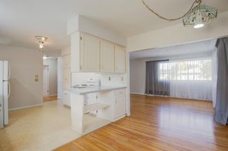 Photo 7: 77 Fredson Drive SE in Calgary: Fairview Detached for sale : MLS®# A1141709