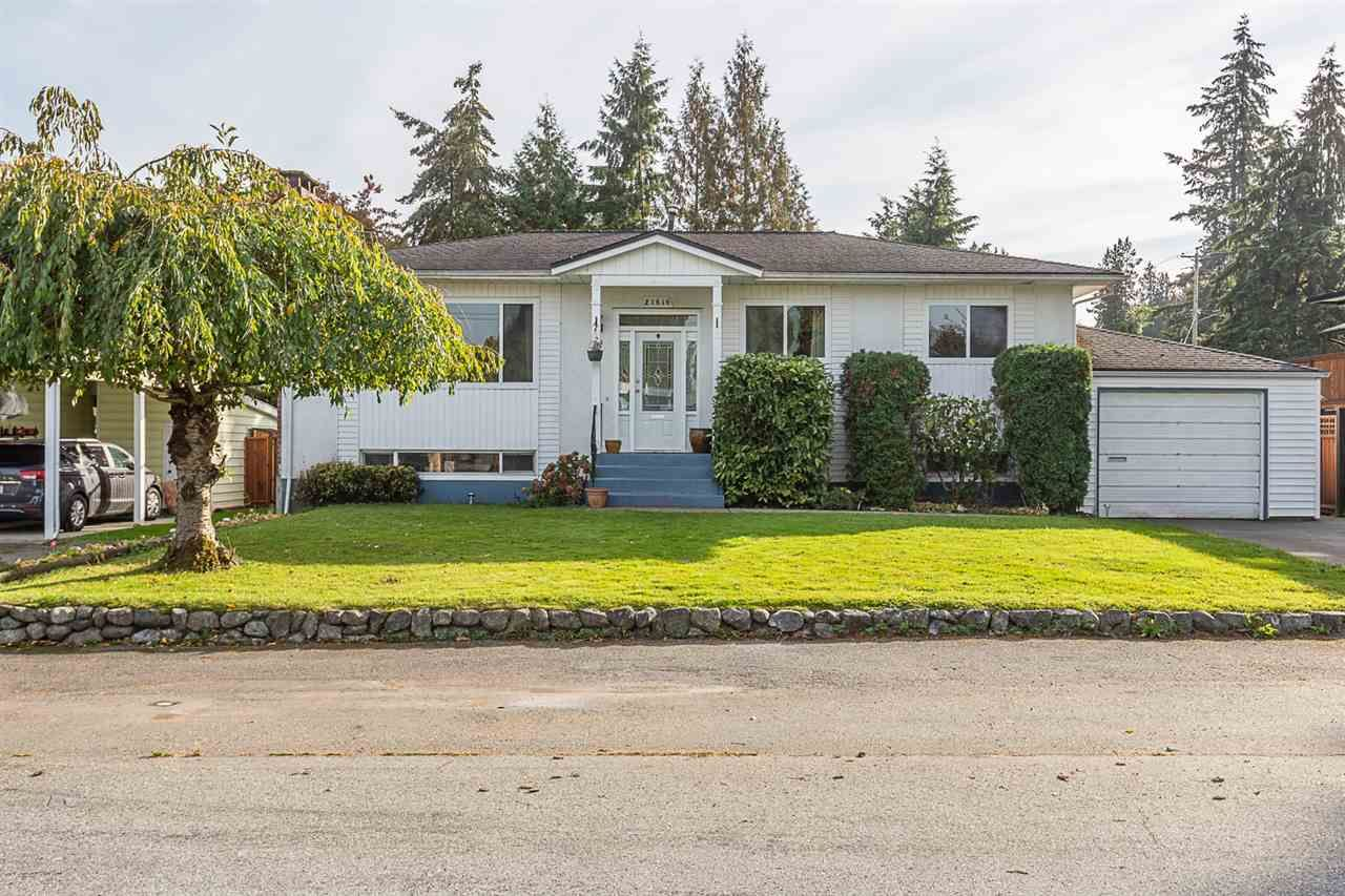 Main Photo: 21616 EXETER Avenue in Maple Ridge: West Central House for sale : MLS®# R2318244