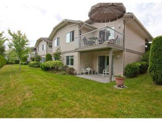 """Photo 32: 6 3635 BLUE JAY Street in Abbotsford: Abbotsford West Townhouse for sale in """"COUNTRY RIDGE"""" : MLS®# F1448866"""
