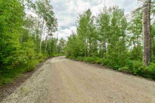 Photo 5: 4428 LAKESHORE Road: Rural Parkland County Manufactured Home for sale : MLS®# E4184645