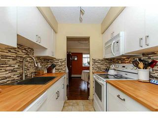 """Photo 7: 304 47 AGNES Street in New Westminster: Downtown NW Condo for sale in """"FRASER HOUSE"""" : MLS®# V1115941"""