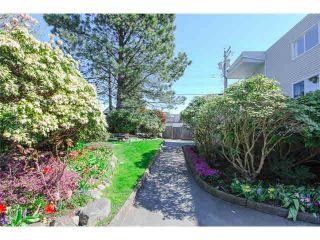 "Photo 15: 108 1354 WINTER Street: White Rock Condo for sale in ""Winter Estates"" (South Surrey White Rock)  : MLS®# R2052521"