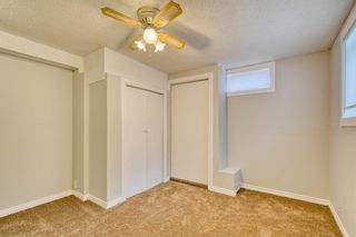 Photo 47: 355 Whitman Place NE in Calgary: Whitehorn Detached for sale : MLS®# A1046651
