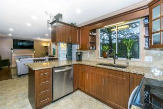 Photo 7: 9645 206 Street in Langley: Walnut Grove House for sale : MLS®# R2328940