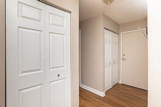 Photo 11: 104 12223 82 Street in Edmonton: Zone 05 Condo for sale : MLS®# E4262738