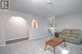 Photo 33: 95 Castle Crescent in Red Deer: House for sale : MLS®# A1144675