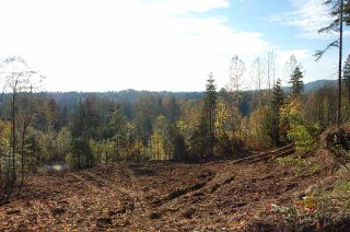 Photo 1: 9507 DAWSON DRIVE in Mission: Mission BC Land for sale : MLS®# R2220007