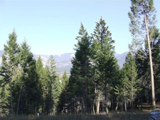 Photo 3: Lot 21 PINERIDGE MOUNTAIN PLACE in Invermere: Vacant Land for sale : MLS®# 2458247