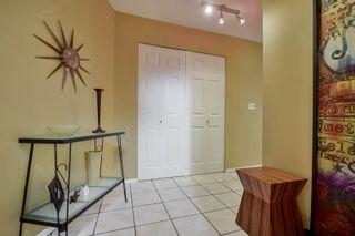 Photo 34: 20801 MCFARLANE Avenue in Maple Ridge: Southwest Maple Ridge House for sale : MLS®# R2065058