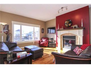 Photo 10: 176 Sienna Passage: Chestermere House for sale : MLS®# C3656284