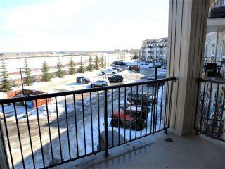 Photo 19: 312 1520 HAMMOND Gate in Edmonton: Zone 58 Condo for sale : MLS®# E4234650