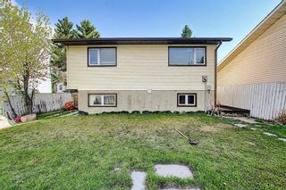 Photo 39: 20 Whitefield Close NE in Calgary: Whitehorn Detached for sale : MLS®# A1101190