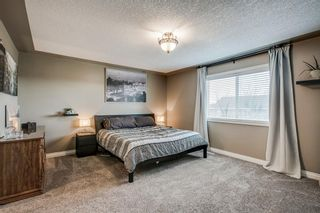 Photo 24: 234 Canoe Square SW: Airdrie Detached for sale : MLS®# A1043547