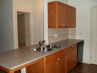 """Photo 7: #309 33318 BOURQUIN CR E in ABBOTSFORD: Central Abbotsford Condo for rent in """"NATURES GATE"""" (Abbotsford)"""