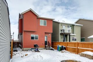 Photo 41: 1610 Legacy Circle SE in Calgary: Legacy Detached for sale : MLS®# A1072527