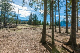Photo 42: 4902 Parker Road in Eagle Bay: Vacant Land for sale : MLS®# 10132680