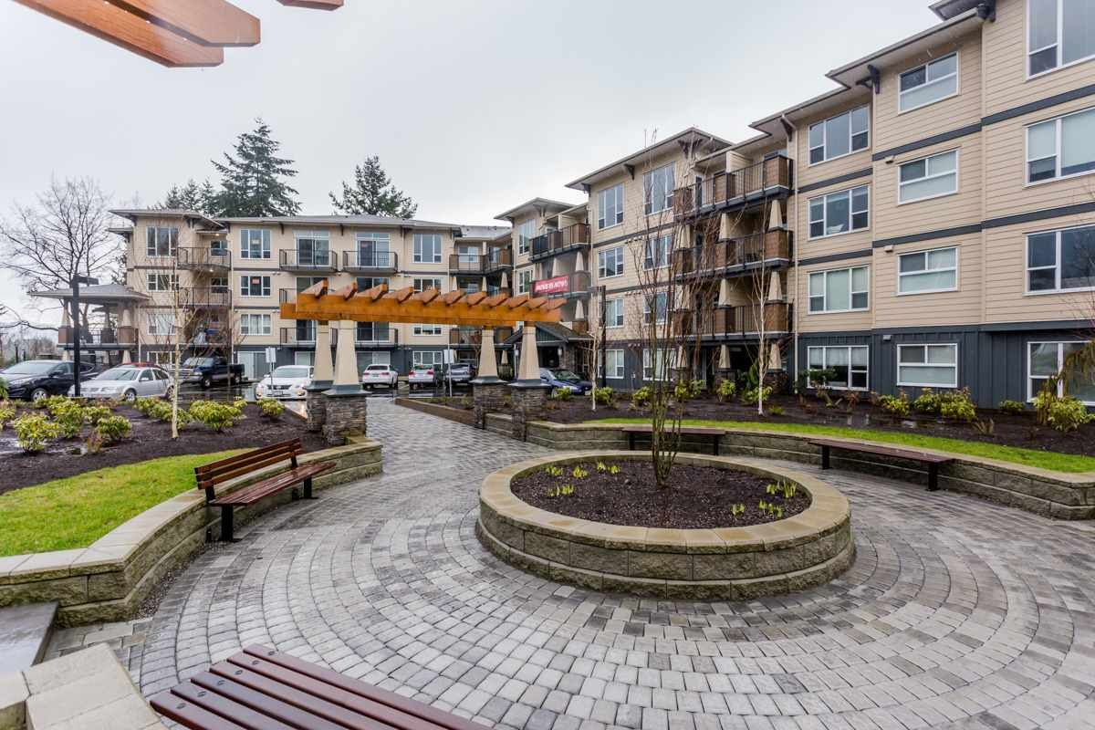 Photo 2: Photos: 411 2565 CAMPBELL AVENUE in Abbotsford: Central Abbotsford Condo for sale : MLS®# R2185831