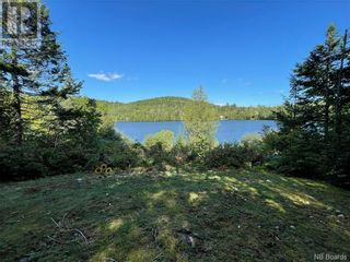 Photo 47: 359 Frye Road in Chamcook: House for sale : MLS®# NB056076
