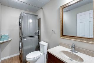 Photo 36: 322 Cooperstown Common SW: Airdrie Detached for sale : MLS®# A1153970