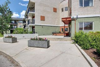 Photo 7: 202 69 Springborough Court SW in Calgary: Springbank Hill Apartment for sale : MLS®# A1123193