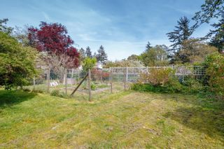Photo 4: 2313 Marlene Dr in : Co Colwood Lake House for sale (Colwood)  : MLS®# 873951
