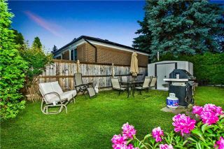 Photo 11: 296 Sussex Avenue in Richmond Hill: Harding House (Bungalow) for sale : MLS®# N3612565
