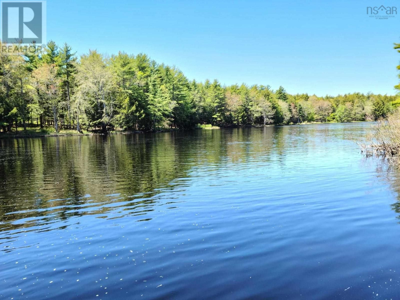 Main Photo: Medway River Road in Bangs Falls: Vacant Land for sale : MLS®# 202122898
