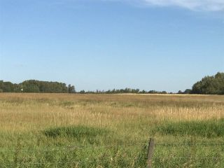 Photo 13: 57525 Rg Rd 214: Rural Sturgeon County Rural Land/Vacant Lot for sale : MLS®# E4192257