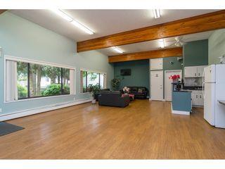 "Photo 29: 231 7449 140 Street in Surrey: East Newton Townhouse for sale in ""Glencoe Estates"" : MLS®# R2569593"
