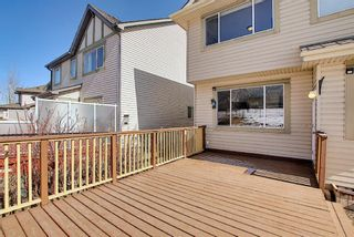 Photo 32: 182 Panamount Rise NW in Calgary: Panorama Hills Detached for sale : MLS®# A1086259