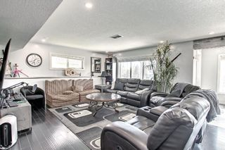 Photo 35: 176 WILLOWMERE Way: Chestermere Detached for sale : MLS®# A1153271
