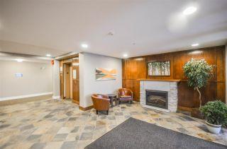 Photo 20: 203 2330 WILSON AVENUE in Port Coquitlam: Central Pt Coquitlam Condo for sale : MLS®# R2325850