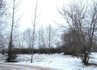 Photo 3: 320 7th Street East in Meadow Lake: Lot/Land for sale : MLS®# SK850757
