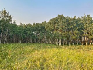 Photo 13: Lot 2 Range Road 33 in Rural Rocky View County: Rural Rocky View MD Land for sale : MLS®# A1134534