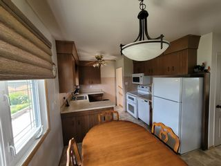 Photo 16: 3537 121A Avenue in Edmonton: Zone 23 House for sale : MLS®# E4253424