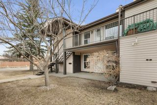 Photo 6: 2045 SADDLEBACK Road in Edmonton: Zone 16 Carriage for sale : MLS®# E4236449